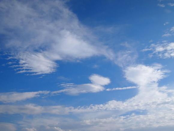 空のキャンバスに描かれた絵