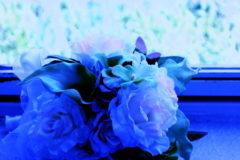 窓辺におかれた青いブーケ