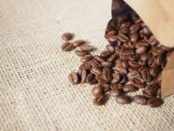 コーヒー 豆 の画像