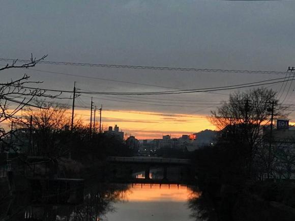 川面に写った朝焼けが美しい画像