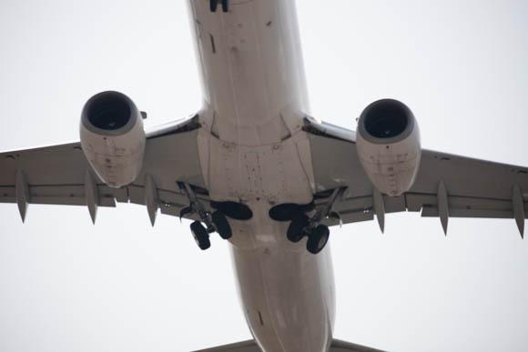 画面から大きくはみ出した飛行機の写真。