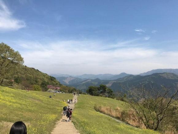 ちょうど菜の花まつりのイベント開催中で、親子連れやカップルなどたくさん人が訪れている翠波高原の写真