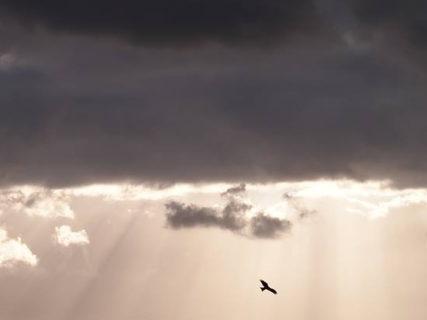 輝く空の画像